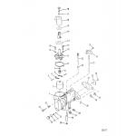 Carburetor assembly(tillotson)