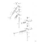 Intake valve and exhaust valve